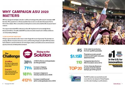 Campaign 201 Brochure