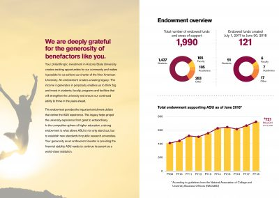 Endowment Report